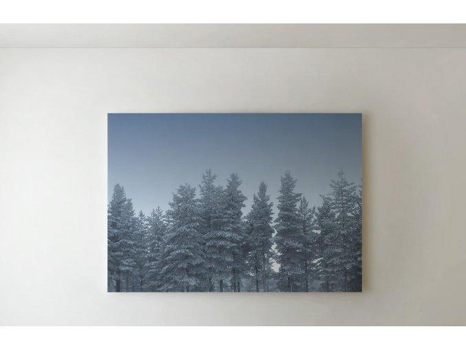 Obraz stromy - 80 x 60 cm
