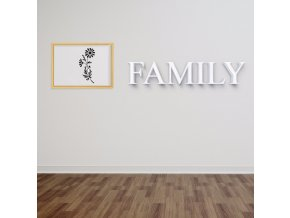 3D nápis Family - 120 x 24 cm